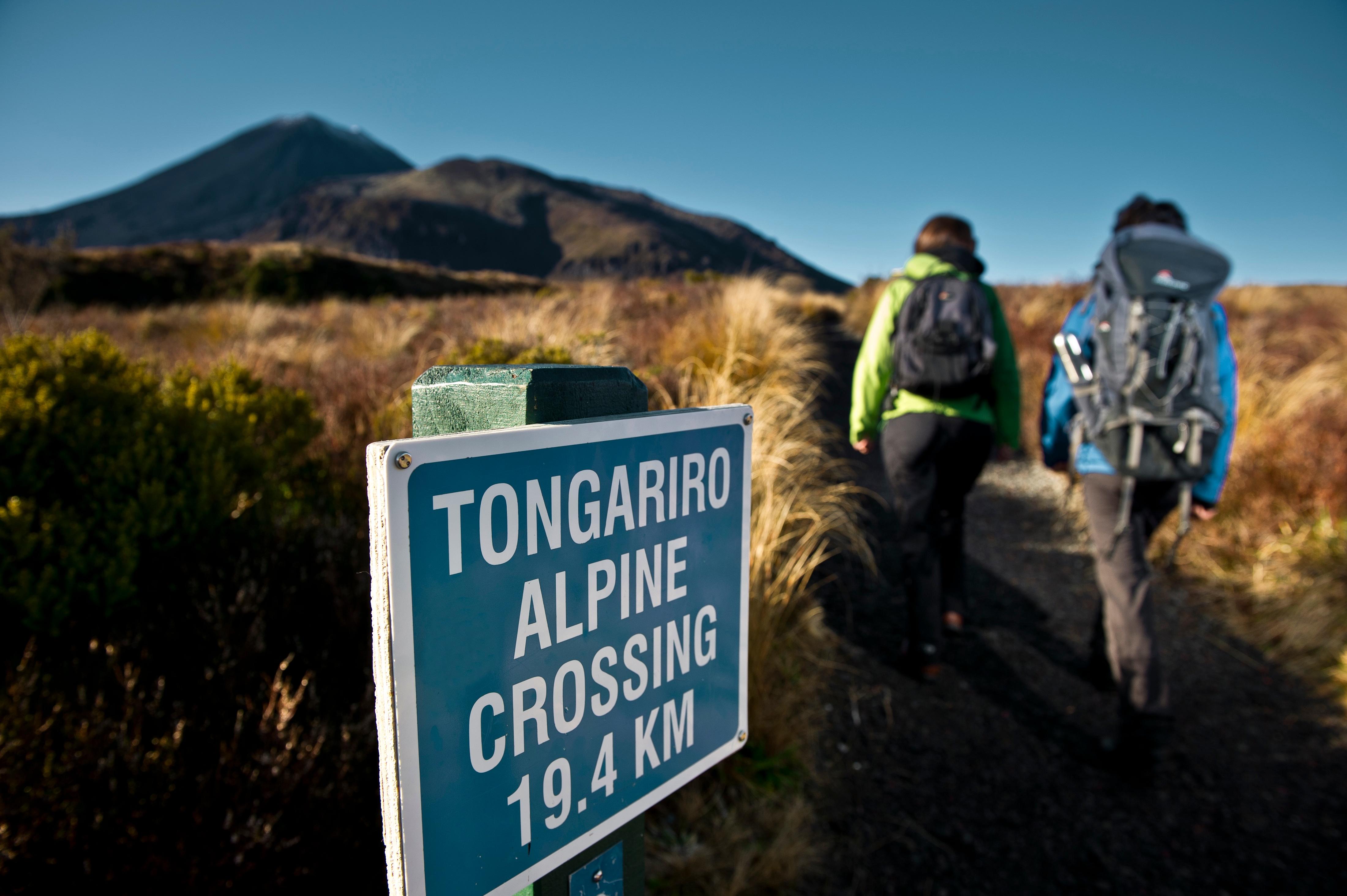 Tongariro Alpine Crossing with Discovery